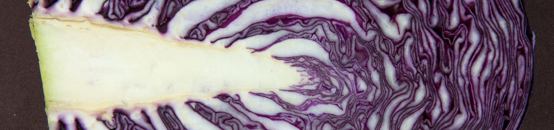Zwei Rezepte für Rotkohl oder Rotkraut – Rotkrautgemüse und Rotkrautsalat